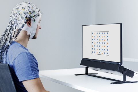 Tobii Pro Spectrum Eye Tracker Synced with EEG